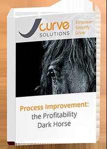 Guide-Process-Improvement-the-Profitability-Dark-Horse.png